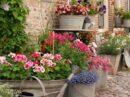Geef je planten een frisse douche op warme dagen