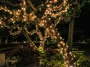 Tips om je tuin gezellig te verlichten