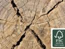Greenpanel is gemaakt van FSC-hout