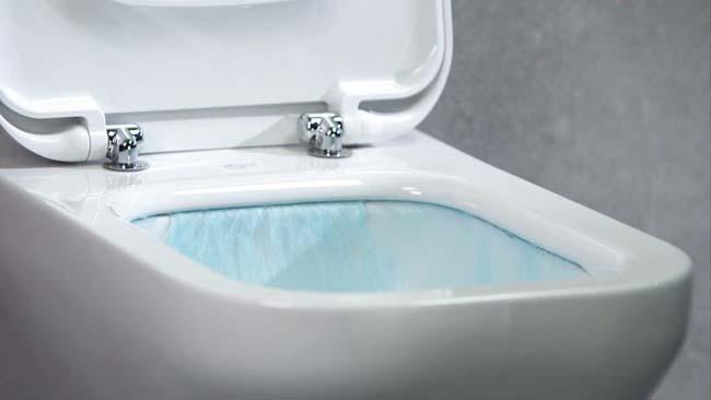 Rimfree toilet